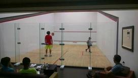 Adult Squash coaching on the squash sport courts at Squash Revolution in Mclean VA